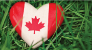 Canada flag in heart shape on grass
