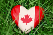 A plastic heart painted as a Canadian Flag, nestled in the grass